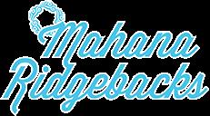 Champion Rhodesian Ridgebacks